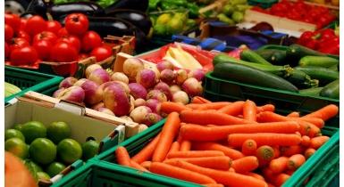 Seyşeller Cumhuriyeti Teknik Heyeti Yaş Meyve Sebze İhracatı İçin Ülkemizi Ziyaret Etti